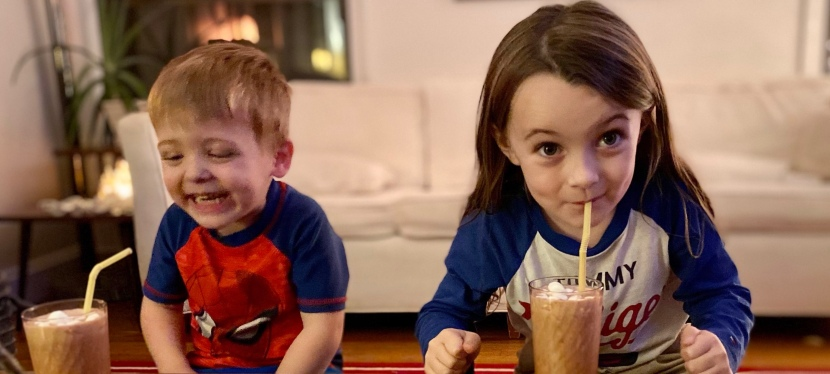 Chocolate Dessert Shakes With Protein forKids